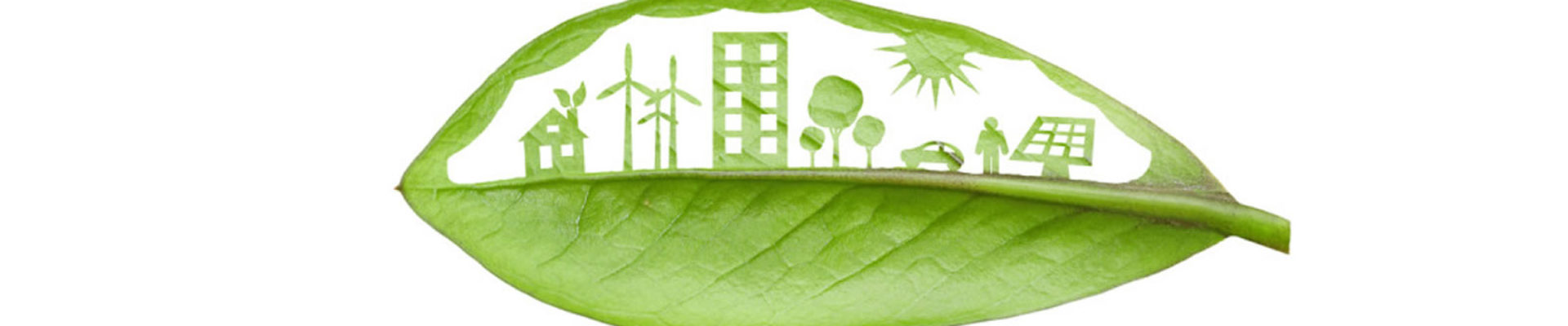information for Sustainable Development